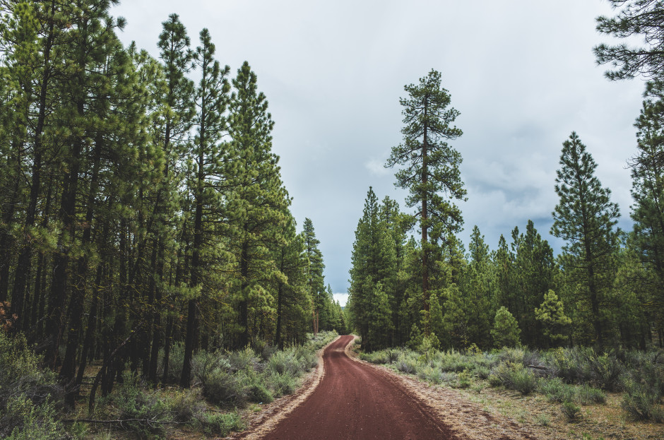 The Oregon Outback 2015: Words Brad Adams, Images Donalrey Nieva